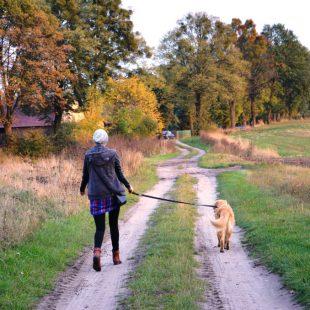 Jak radzić sobie z jesiennym dołem?