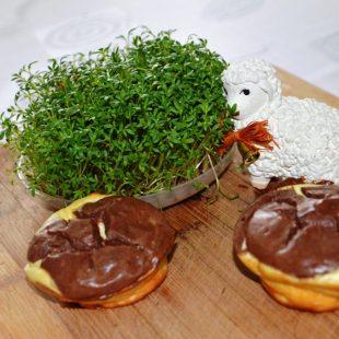 Lekkie serniczki białkowe idealne na Wielkanoc.