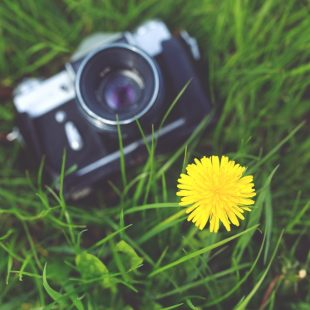 Kilka rzeczy, które warto zrobić przed nadejściem wiosny