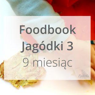 Foodbook Jagódki 3 – 9 miesiąc
